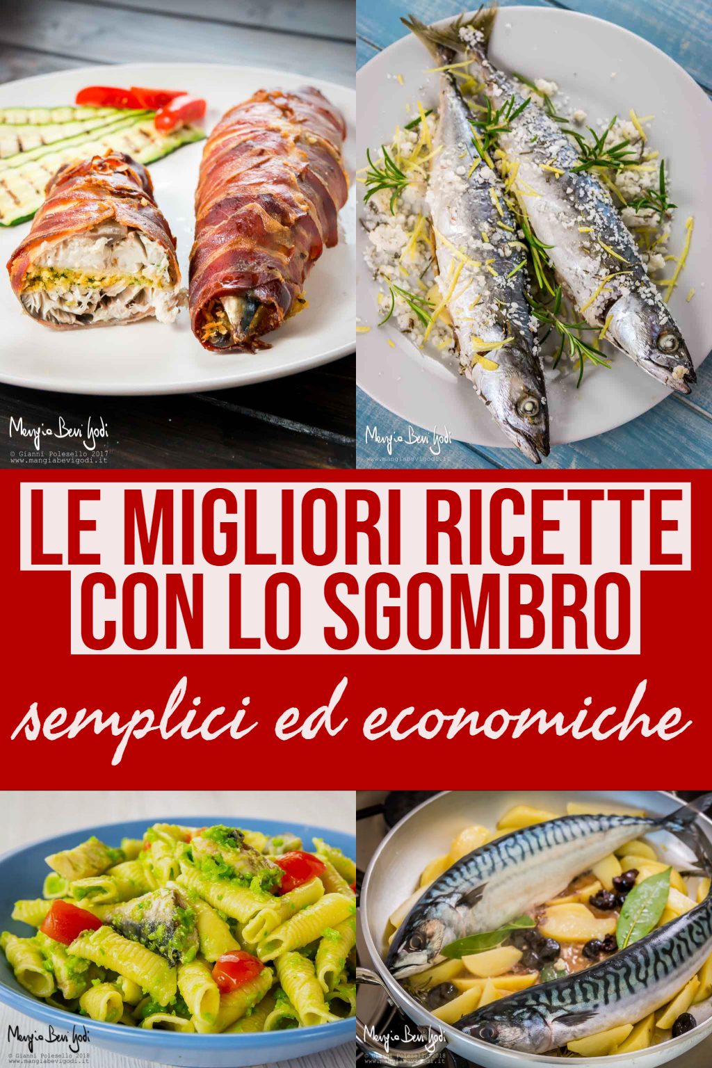 Sgombro: le ricette migliori