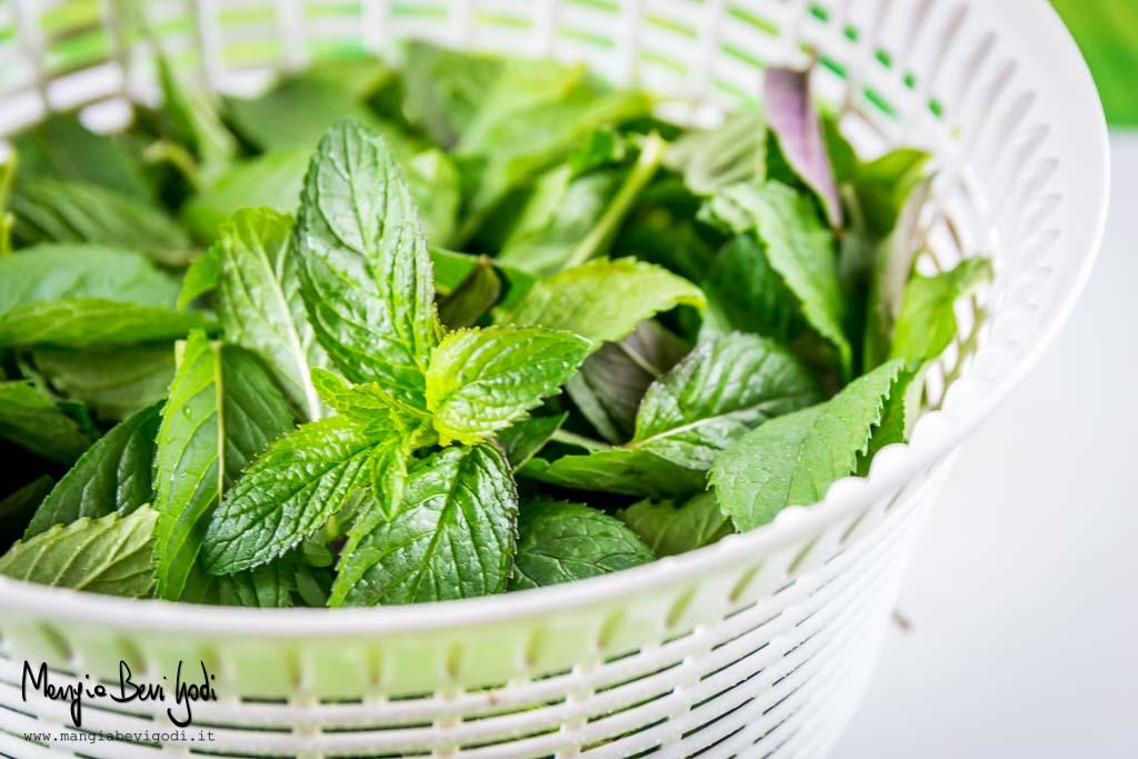 Liquore alla menta - Asciugare bene le foglie