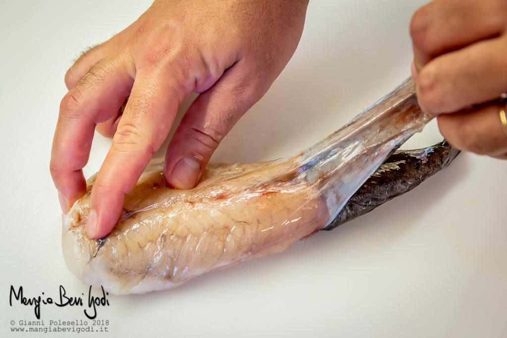 Rimuovere la pelle alla coda di rospo