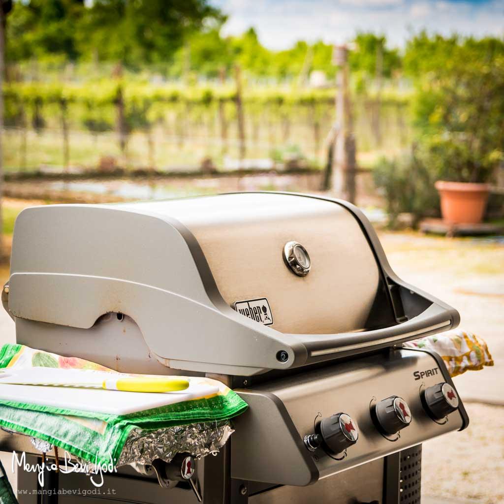 branzino nel barbecue con coperchio