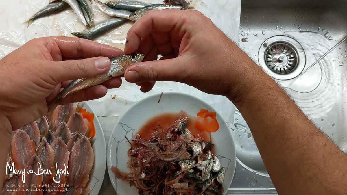 Afferrare la testa della sardina