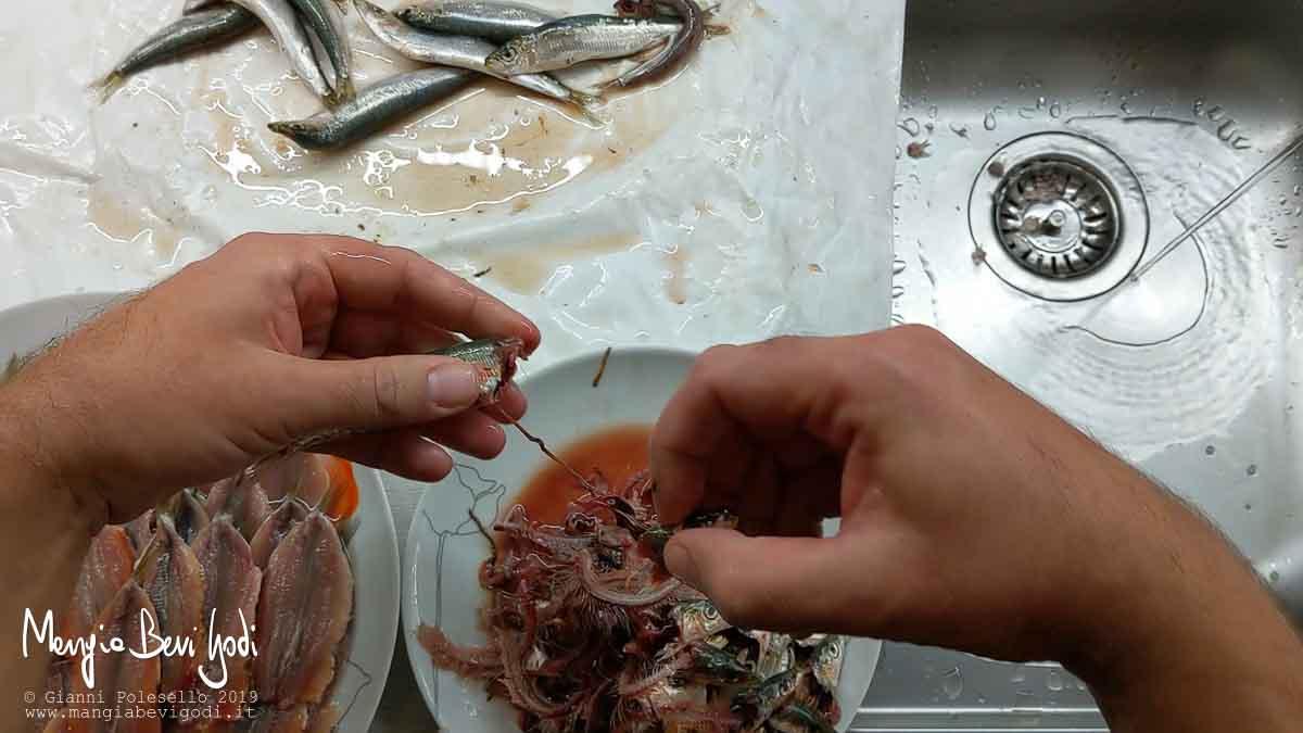 Rimuovere la testa della sardina